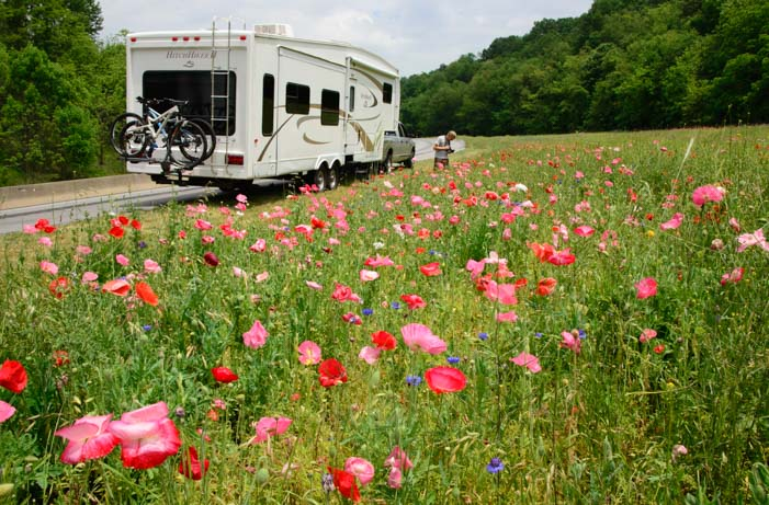 RV in wildflowers I-40 Asheville North Carolina_