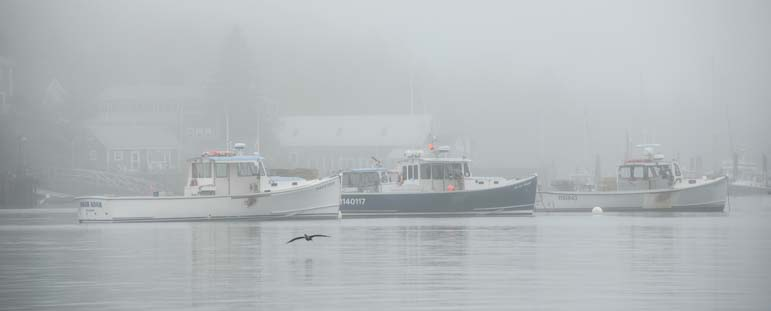 Lobster boats in fog in Maine