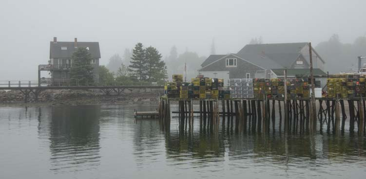 Fog Southwest Harbor Maine