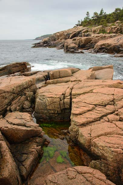 Tidepools in rocks Acadia National Park Maine
