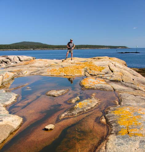 Tidepool Grindstone Neck Maine Acadia National Park
