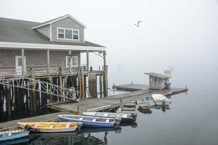 Foggy dinghy dock Bass Harbor Maine