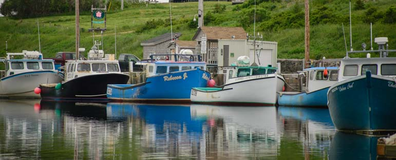 Lobster boats Bay St. Lawrence Cape Breton Island Nova Scotia Canada