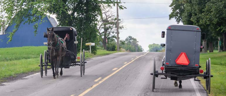 Amish carriages pass each other in Finger Lakes New York