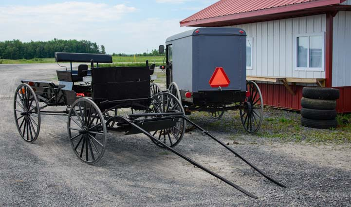 Amish open buggy and closed carriage