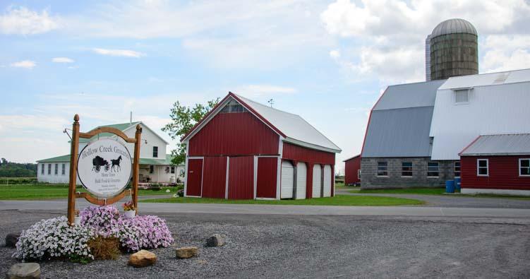 Amish grocery store Seneca Falls NY