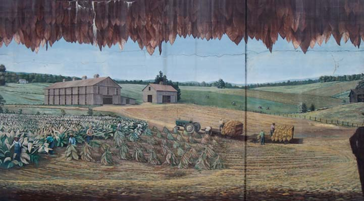 Tobacco fields mural Maysville Kentucky