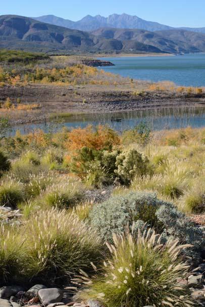 Four Peaks Arizona Roosevelt Lake