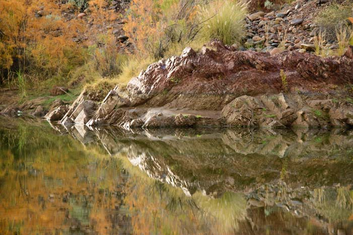 Salt River Phoenix Arizona