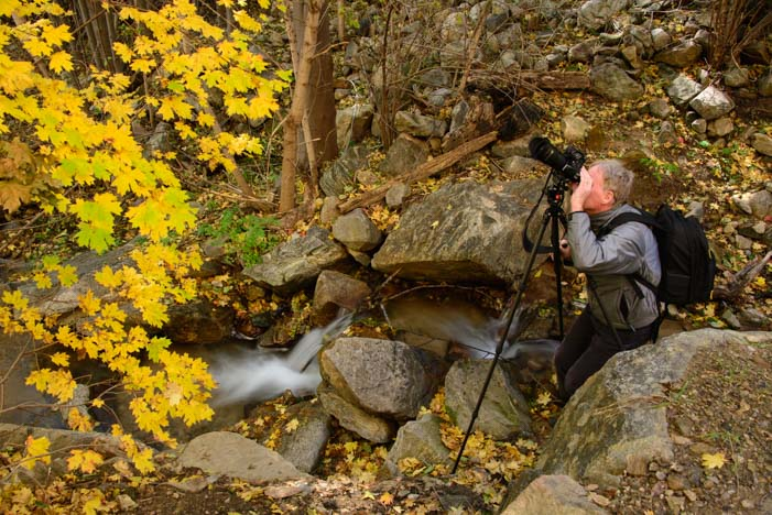 Photographing fall colors Mt. Graham Recreational Area Coronado National Forest Arizona