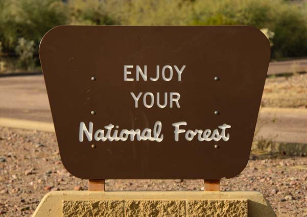 Enjoy Your National Forest