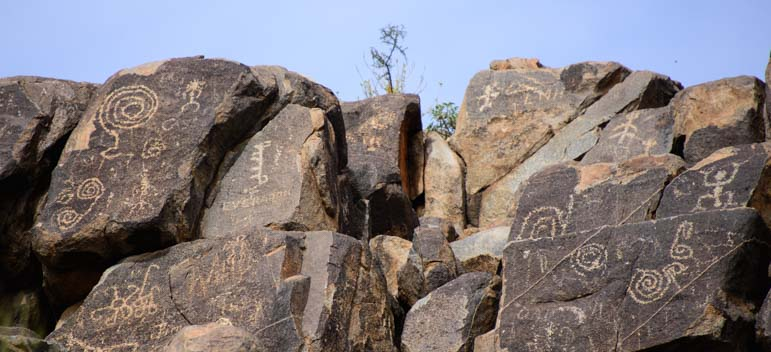 Signal Hill petroglyphs Saguaro National Park Arizona