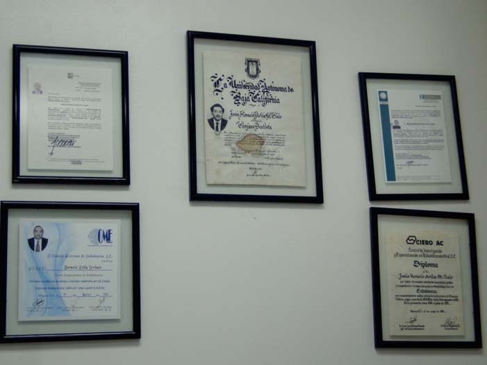 Dental Surgeon Endodontic Degrees Dr. Horacio Avila
