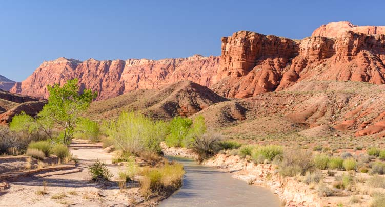 Paria River trail hike Lees Ferry Arizona