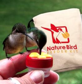 Hummingbird hand-feeding kit