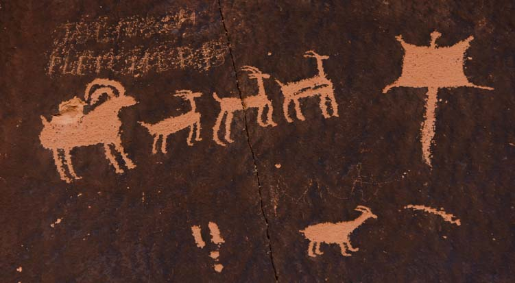 Petroglyphs Rock Art Newspaper Rock Utah Herd of deer