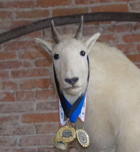Mountain Goat at Philipsburg Brewery Montana