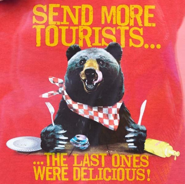 Bear sign Send More Tourists