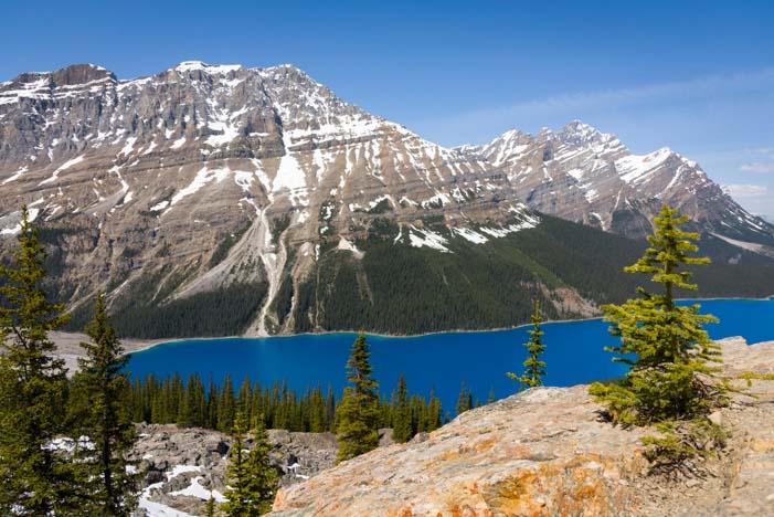 Peyto Lake Banff National Park Icefields Parkway Alberta Canada