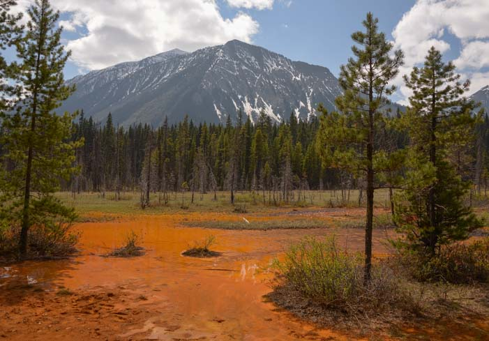 Ocher Creek Paint Pots Kootenay National Park BC Canada