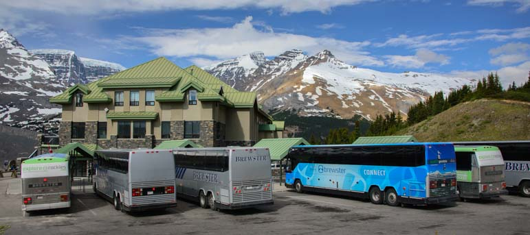 Tour buses Columbia Icefields Parkway Jasper National Park Alberta Canada