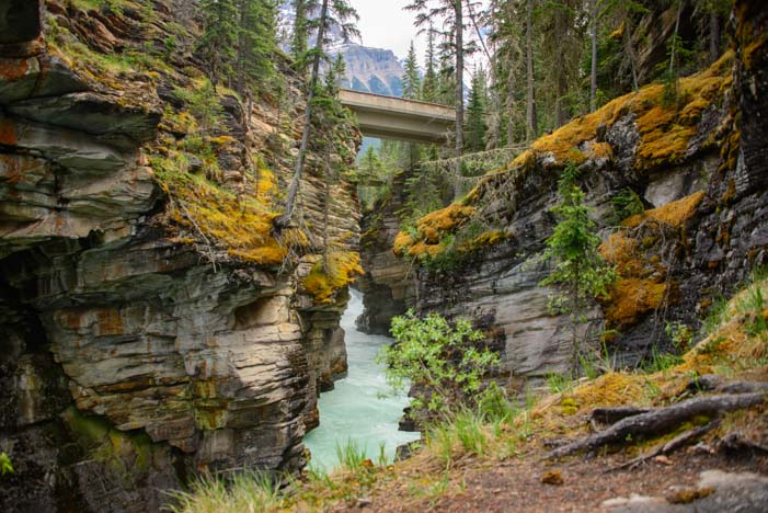 Athabasca Falls Jasper National Park Alberta Canada Rocky Mountains