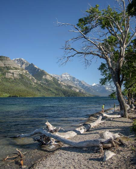 Shoreline Waterton Lakes National Park Alberta Canada