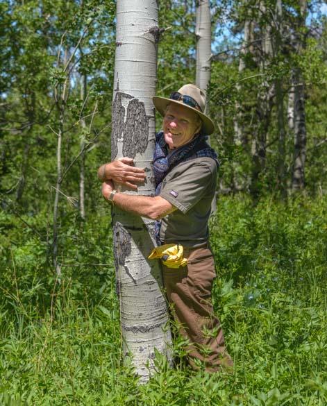 Tree hugger Glacier National Park Montana