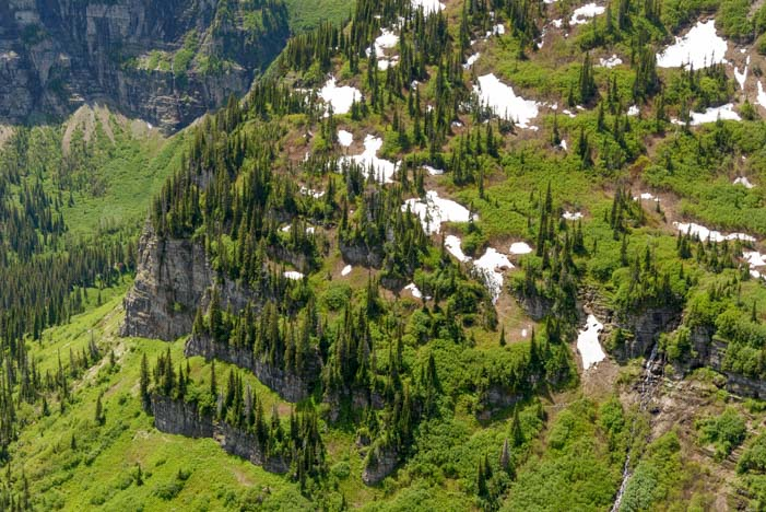 Snow and trees Going to the Sun Road Glacier National Park Montana