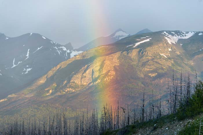 Rainbow Glacier National Park Montana