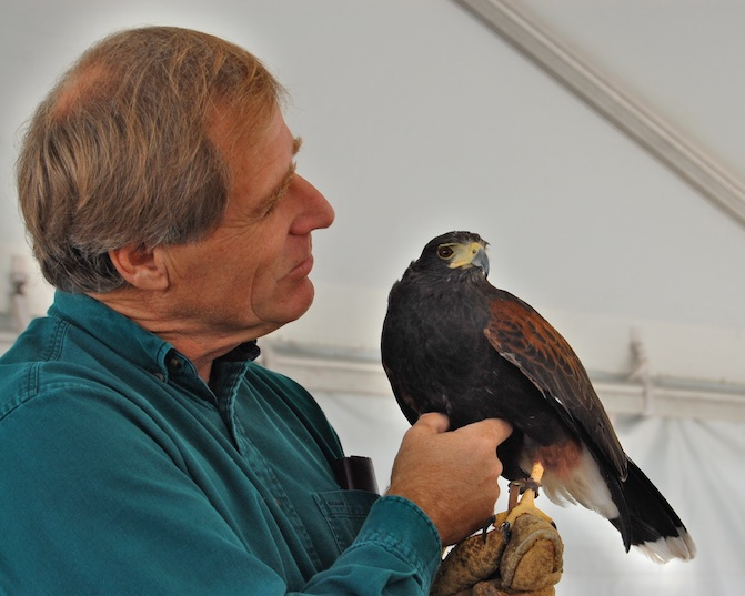 Martin Tyner Harris Hawk Thumper Education Outreach Iron County Fair Parowan Utah 2008