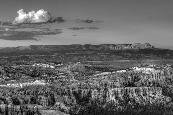 Bryce Canyon National Park Utah Inspiration Point Black and White