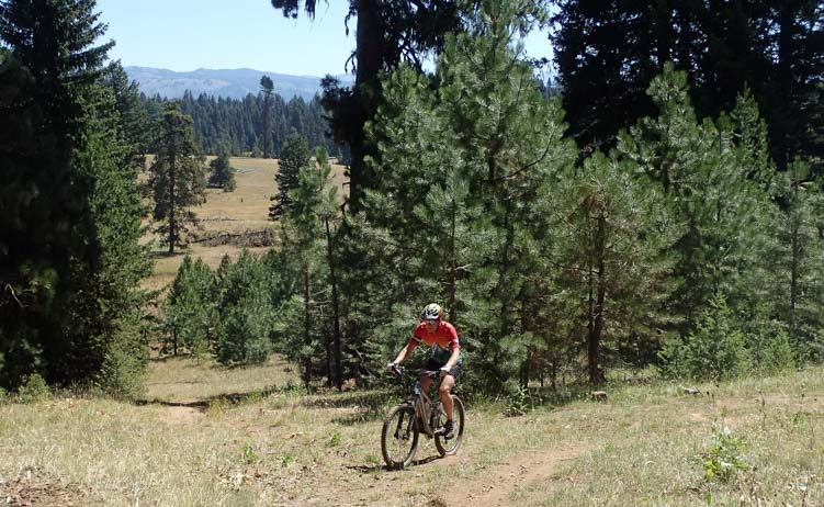 Mountain Biking Brundage Mountain McCall Idaho