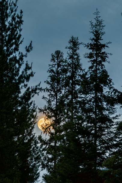 Full moon Ross Creek Cedars Scenic Area Montana