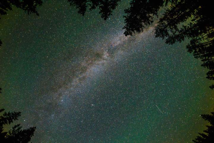 Milky Way above the trees McCall Idaho