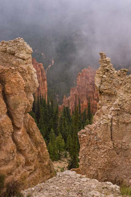 Fog and mist Rainbow Point Bryce Canyon National Park Utah