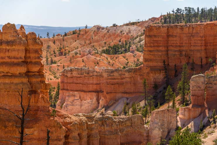 Red rock walls Fairyland Trail Bryce Canyon National Park Utah