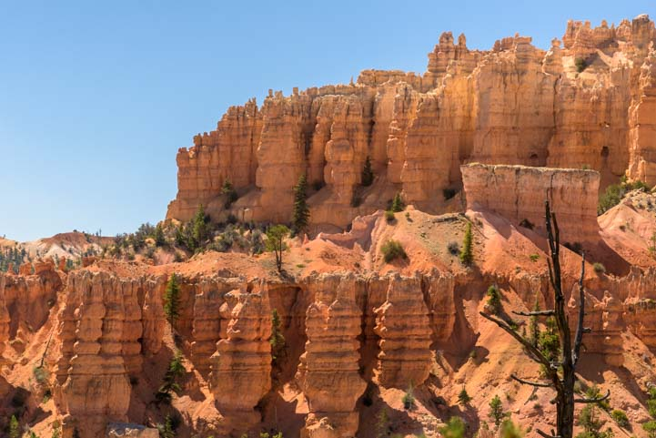 Beautiful Fairyland Trail Hike Bryce Canyon National Park Utah