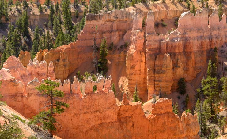 Windows Fairyland Trail Bryce Canyon National Park Utah