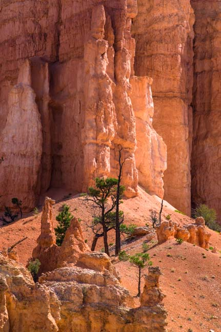 Magic Fairyland Point Bryce Canyon National Park Utah