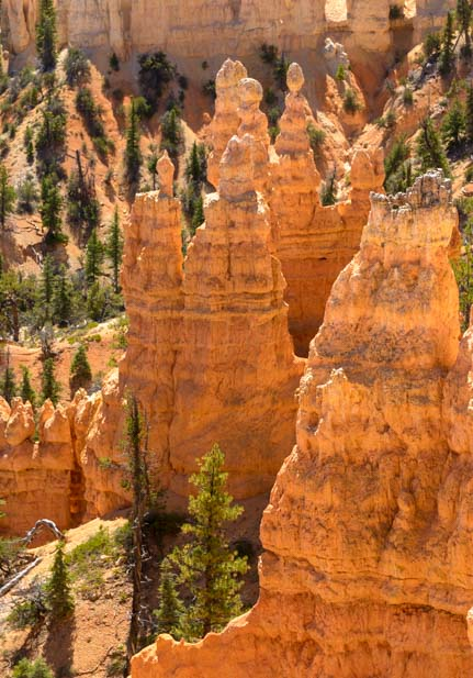 Glowing spires Fairyland Trail Bryce Canyon National Park Utah