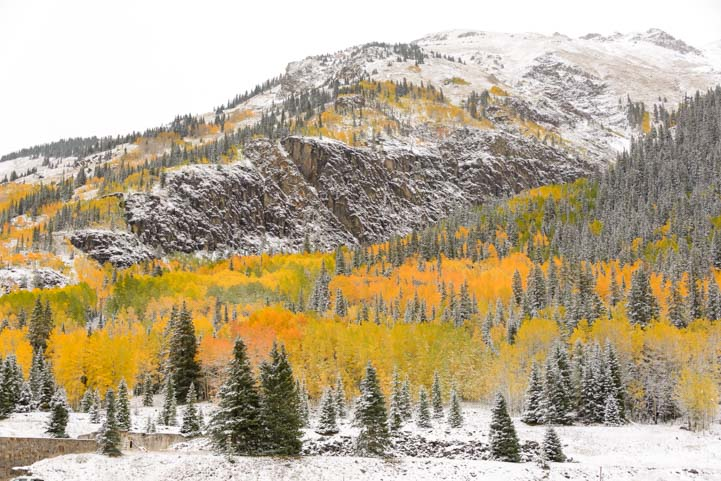 Colorado fall colors after winter snow
