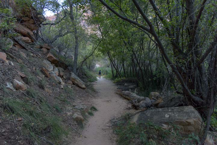 Trail to Lower Calf Creek Falls Grand Staircase Escalante Utah