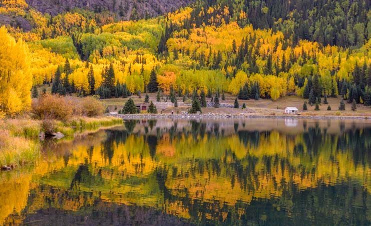Aspens in fall San Juan Skyway Colorado Rocky Mountains