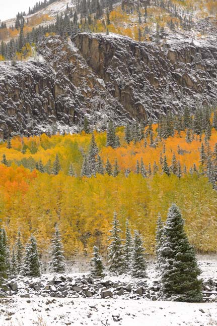 Autumn color aspen trees San Juan Skyway Colorado Rocky Mountains