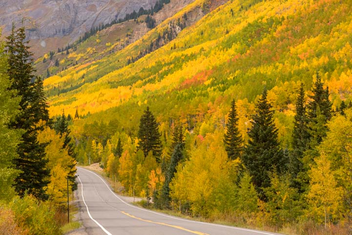 San Juan Skyway Colorado Rocky Mountains Autumn Leaves