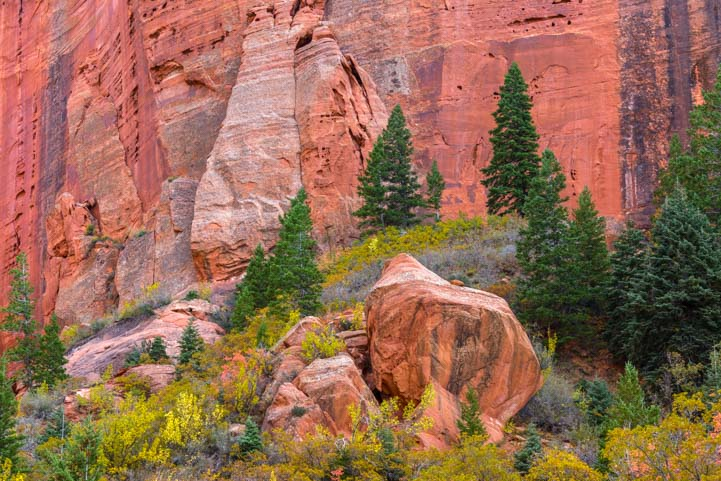 Kolob Canyons Red Rock Fall Foliage Zion National Park Utah