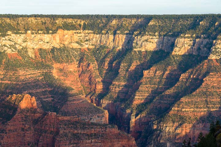 North Rim Grand Canyon Arizona View