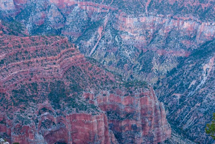 Color Patterns North Rim Grand Canyon Arizona