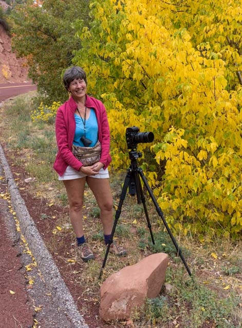 Photography in Fall Colors Zion National Park Utah